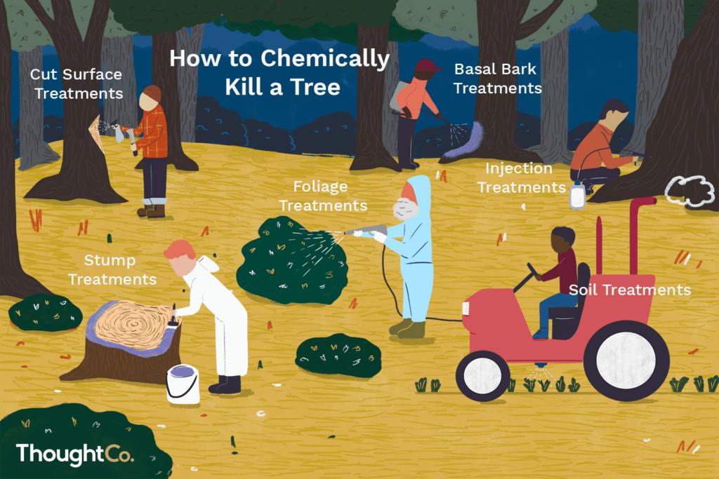 Уничтожение деревьев химикатами