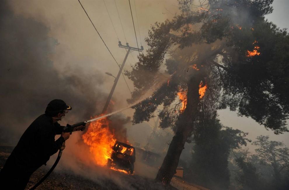 Возгорание дерева рядом с ЛЭП